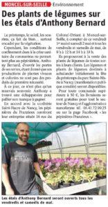 [COVID-19]DES PLANTS DE LÉGUMES SUR LES ÉTALS D'ANTHONY BERNARD